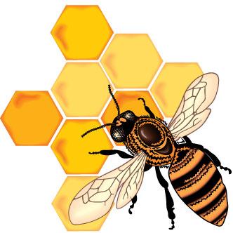 abeja-y-panal
